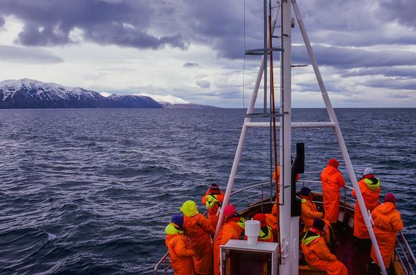 команда в спасательных жилетах на яхте у берегов Исландии
